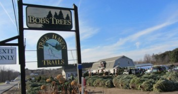Things to do with kids | Saratoga NY | Bobs Trees