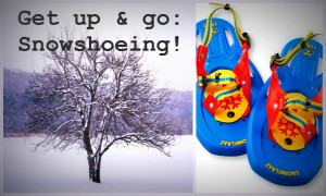 Snowshoeing | Saratoga County | Winter