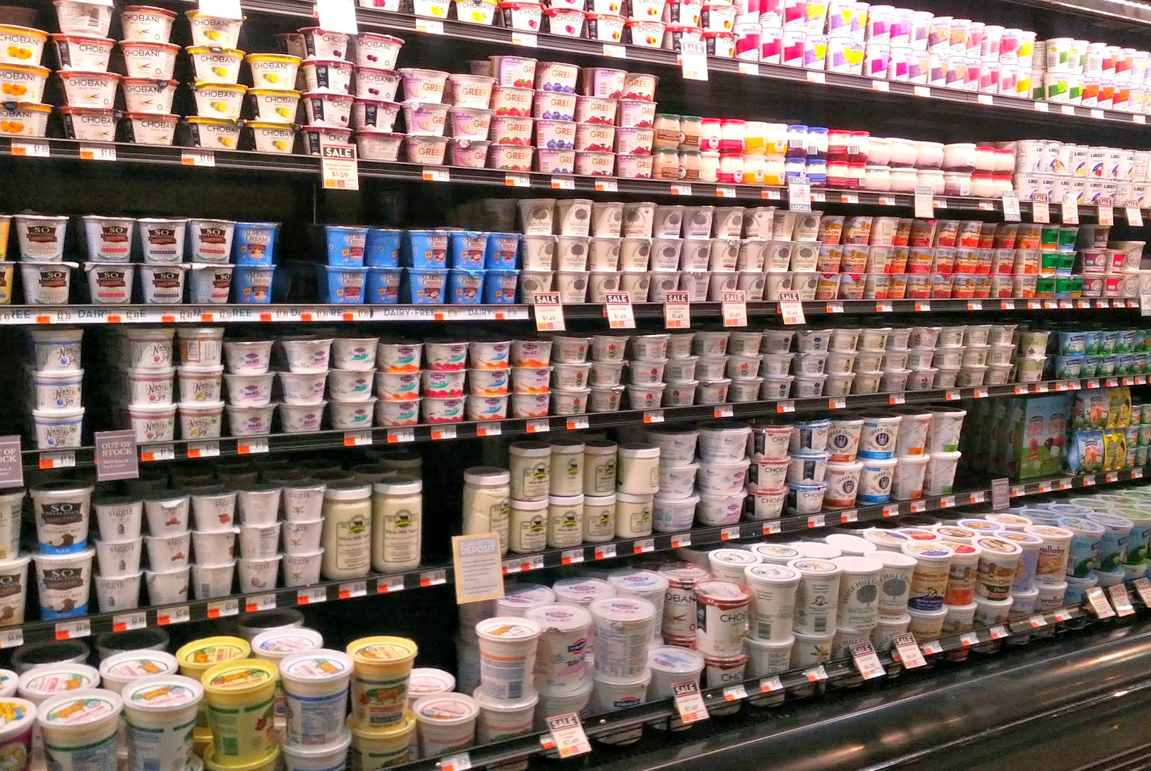 Yogurt Galore!