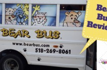 Bear Bus Review