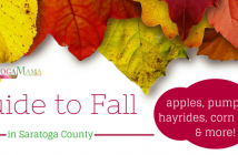 Guide to Fall