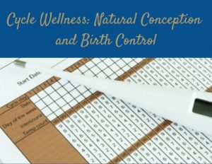 Cycle Wellness: Natural Conception and Birth Control @ Hannah's Healing Wellness Studio | Saratoga Springs | New York | United States