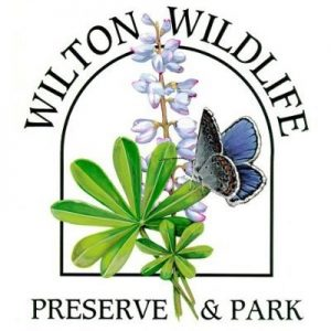 Nature Picture Frame Craft @ Wilton Wildlife Park & Preserve Office | Gansevoort | New York | United States